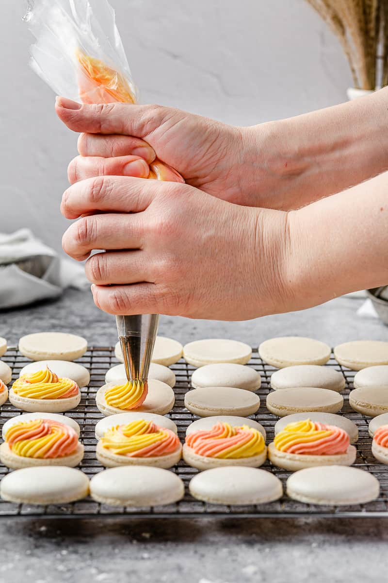 piping pink and yellow buttercream onto macaron shells